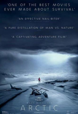 Arctic - Affiche