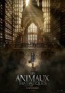 Les Animaux fantastiques - Affiche