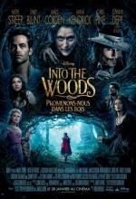 Into the Woods-Promenons-nous dans les bois - Affiche
