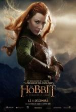 Le Hobbit : La Desolation de Smaug - Affiche