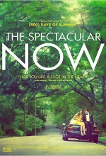 The Spectacular Now - Affiche