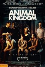 Animal Kingdom - Affiche
