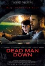 Dead Man Down Affiche 5